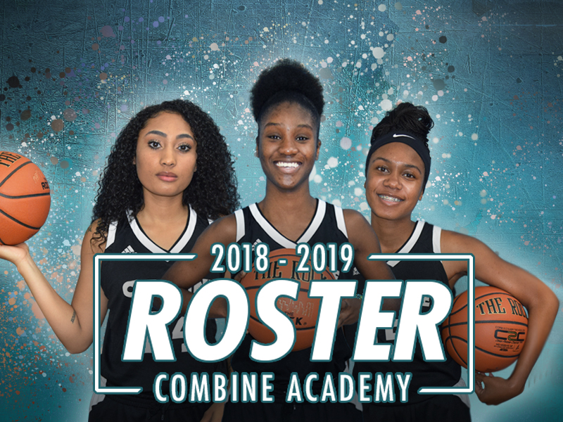 Combine Academy Girls Basketball Banner
