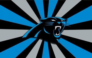 Carolina Panthers Logo Design